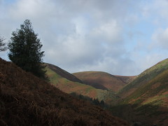 Carding mill valley 2 (topher@mill) Tags: england landscape shropshire knight churchstretton christopherknight fujis5500 northwestengland tophermill
