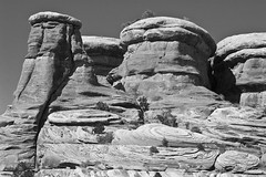 Red Rock Formations (David Thyberg) Tags: bw usa mountain nature rock stone landscape utah canyonlandsnationalpark 2007 theneedles anawesomeshot flickrchallengegroup