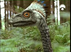 17 Incisivosaurus closeup