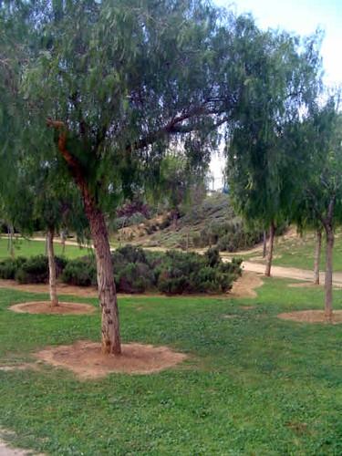 parque de Ses Sorts
