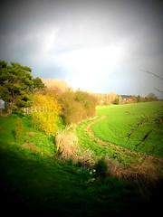 bulbourne valley lomo (kjerstieb) Tags: england tring picnik