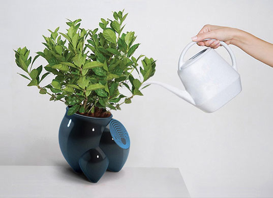 Seekret Pot Plant tells you the age of the plant