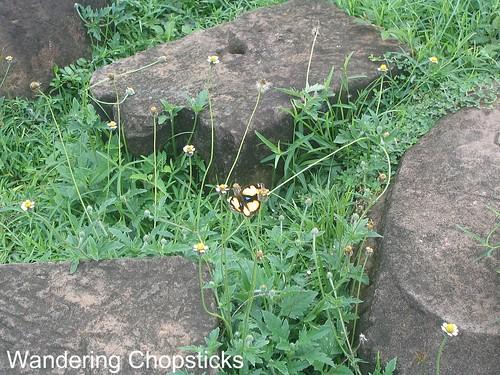 Angkor Thom 14