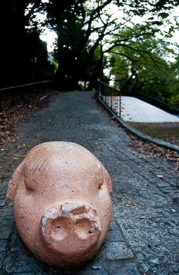 komozawa park pig_0294