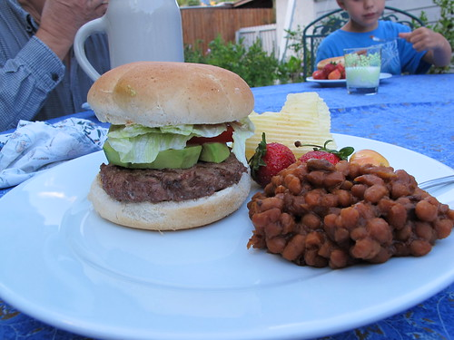 unplugged sunday:  first barbeque