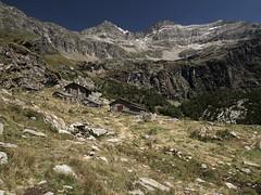 Alpe Fora (whyhellsee) Tags: summer italy alps construction pasture vernacular baita hardlife alpeggio chiareggio valmalenco