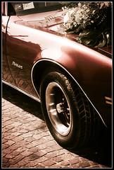 Pontiac Firebird (Francesco Rachello) Tags: flowers wedding red slr car wheel contrast digital photoshop canon aperture 1750 firebird pontiac dslr tamron postproduction digitalslr 30d canon30d pontiacfirebird eos30d canoneos30d 1750mm tamronspaf1750mmf28xrdiiildasphericalif vighetting