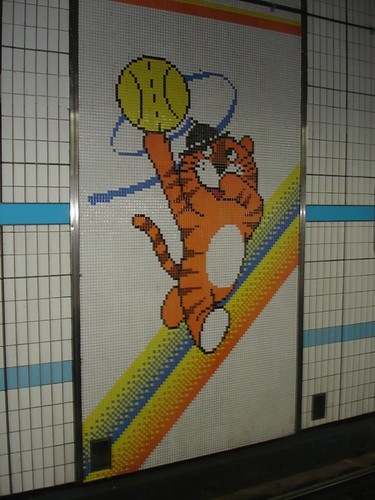 Basketball 호돌이
