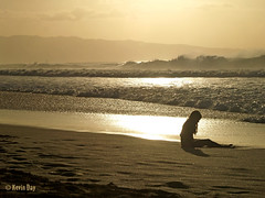 Beach Girl (tanagerphoto) Tags: travel sunset people mist palms hawaii sand surf waves humanity zoom oahu silhouettes olympus surfing telephoto northshore breakers spectators figures ehukaibeachpark e500 ehukaibeach bonzaipipeline tanagerphotography
