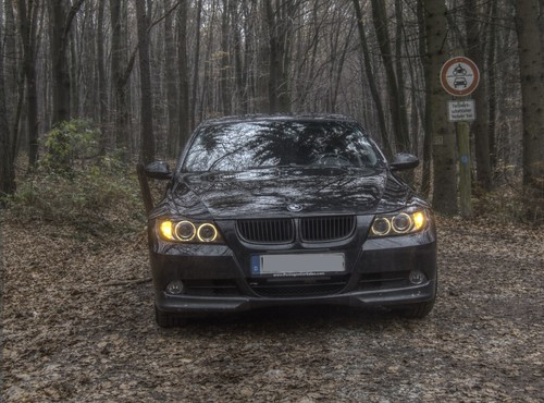E90 Front Woods.png