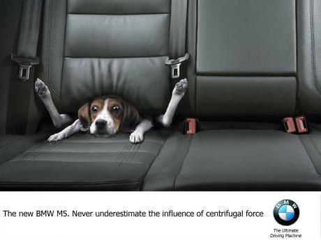 Картинки: Прикольная реклама BMW