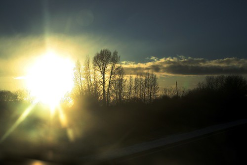 Sunflare study