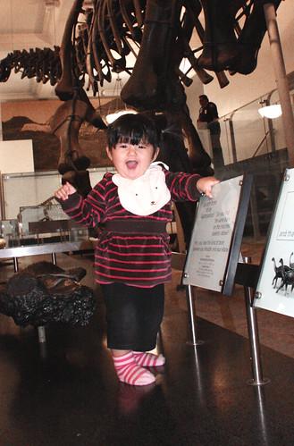 Matilda en el Museo de Historia Natural