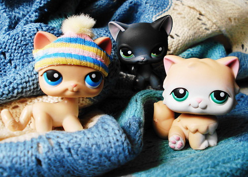365 Toy Project - Day 45: Littlest Pet Shop Cats by Sakuya Masaki.