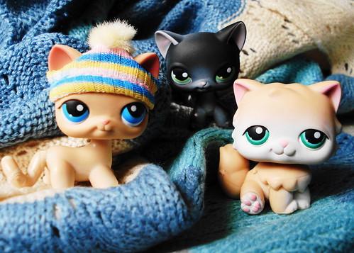 365 Toy Project - Day 45: Littlest Pet Shop Cats by Sakuya Masaki.