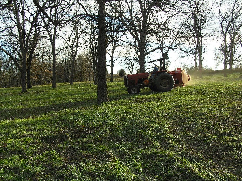 Oklahoma Pecan Harvest Pictures (2013, trailer, propane) - (OK