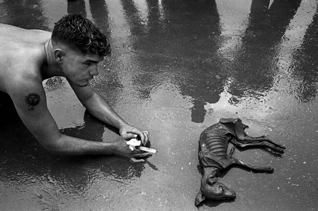 Cuba: fotos del acontecer diario 2084539069_3ea574de12_o