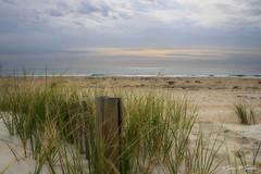 sand and sky - orton (wildandwoolyart) Tags: beach photoshop northcarolina atlanticocean orton sandfence beachscenes emeraldislenorthcarolina canonxti400d sandandsky