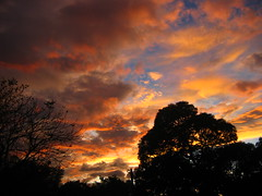 sunset over a mango farm (.emong) Tags: trees sunset sky clouds canon landscape farm philippines philippineislescom zamabales philippinephotographicsociety indiosnobyembre2008