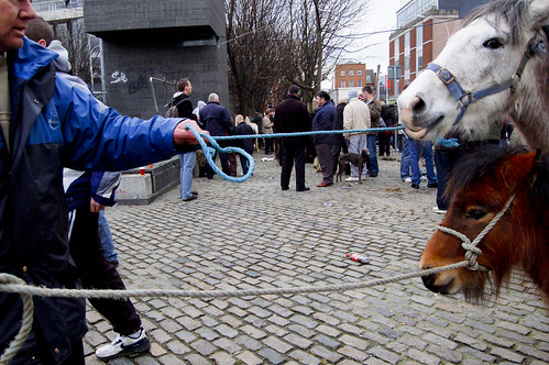 Smithfield Horse Fair