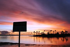 Picture 073 (ben pollard) Tags: ocean california pink blue sunset red orange sun west colour reflection beach water sign rose yellow cali night contrast palms rouge fire eos reflecting evening coast colours sandiego bonito beautifullight silouette palmtrees sd 10d hermoso reflexion eos10d beau reflexin coolbeans sandiegobay bello reflexo riflessione rflexion   coloures canonef28105mmf3545usm sandiegosunsets californiasunsets sunsetinsandiego photosbybenpollard picturesbybenpollard