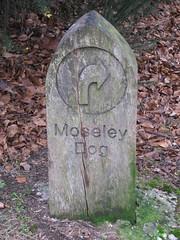 Moseley Dog, Swanshurst Lane (new folder) Tags: dog sign birmingham 11 bog moseley birminghamuk moseleybog rightarrow 11circular swanshurstlane moseleydog 11busroute birminghamct