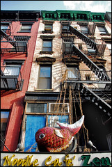 fish karma (dogfaceboy) Tags: nyc newyorkcity ny newyork manhattan lowereastside stmarksplace