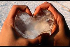 ~Frozen Heart In Burning Hands~ (matiya firoozfar) Tags: ice canon frozen persian hands hand heart iran persia valentine burning iranian  isfahan      happyvalentine alieh esfhan canon400d matiya    matiyafiroozfar      p dddddddd