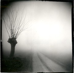 The form of silence. (candido baldacchino) Tags: holga 120s ixtlan
