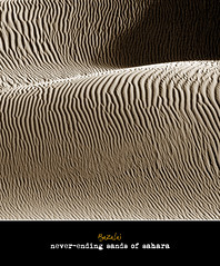 uselessness of everything (Bazalai) Tags: sahara sand desert searchthebest tunisia dune douz novideo impressedbeauty mariusvasiliu terradesign bazalai megashot theunforgettablepicture theperfectphotographer