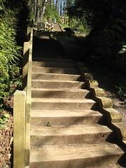 Kelsey Creek Park Stairs