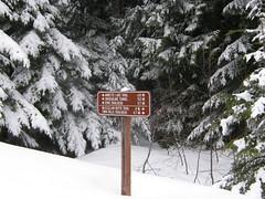 My turnaround Point for the day at east end where McClellan trail leaves John Wayne. (bikejr) Tags: ironhorse johnwayne