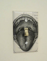 anatomical mouth switchplate
