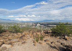 Good view of a city (Tucson) but the city is small. (Tim Kiser) Tags: 2015 20151007 arizona img8056 october october2015 pimacounty pimacountyarizona santacatalinamountains tucson tucsonarizona tucsonmountains tucsonbasin tumamochill universityofarizona cityskyline distantcity distantmountains distantskyline distantskyscrapers downtowntucson downtowntucsonskyline gravel partlycloudy rocks scenicoverlook skyline southarizona southeastarizona southeasternarizona southernarizona view viewfromamountain viewfromascenicoverlook viewoftucson viewofacity viewofdowntowntucson unitedstates