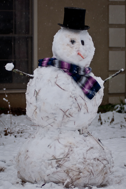 Day 126: Snowman