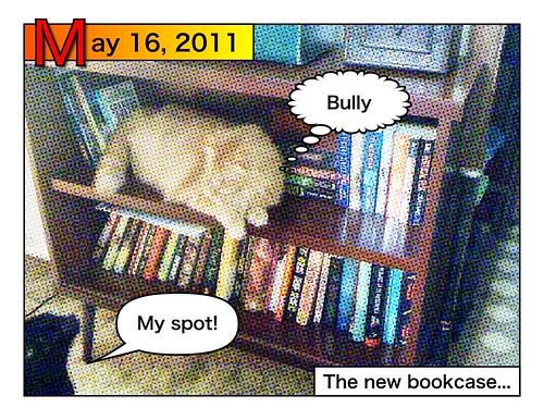 Cat Tales #1