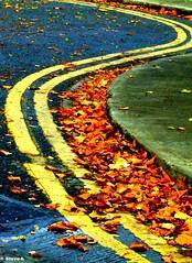 Curves (Steve-h) Tags: nature autumn leaves double yellow lines curb road garda siochana irish police station 1000faves dublin ireland fujifilmfinepixs9600 steveh mygearandme mygearandmepremium mygearandmebronze mygearandmesilver mygearandmegold mygearandmeplatinum mygearandmediamond aboveandbeyondlevel2 aboveandbeyondlevel1 aboveandbeyondlevel3 aboveandbeyondlevel4 rememberthatmomentlevel1 rememberthatmomentlevel2 rememberthatmomentlevel3 rememberthatmomentlevel4 rememberthatmomentlevel5 rememberthatmomentlevel6 rememberthatmomentlevel7 rememberthatmomentlevel8 rememberthatmomentlevel9 rememberthatmomentlevel10 aerlingus europe art design tourism tourists recreation europa eu 1525f allrightsreserved