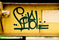 Sibl (All Seeing) Tags: art graffiti trains tags sfgraffiti graffitiart sibl freights paintedtrains sanfranciscograffiti sibler freightgraffiti boxcarart bayareagraffiti hobotags