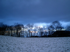 winter trees (eyeflyer) Tags: blue trees winter snow evening hills jura sobeautiful olten wonderworld top20everlasting eyeflyer top25blue
