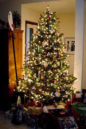 Christmas Tree at Amys
