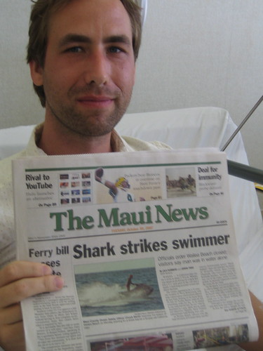 Shark Strikes Swimmer