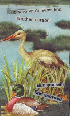 Suo (Swamp)