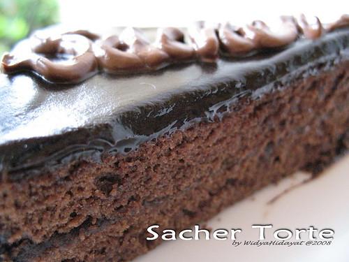 Sacher-3