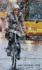 Snowstorm Brochure