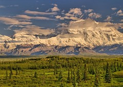 Denali (Matt Champlin) Tags: life travel camping summer sun mountain snow ice nature alaska clouds open view north alpine midnight denali mckinley breaks tundra mosquitoes expanse muskey aplusphoto diamondclassphotographer flickrdiamond