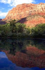 Virgin River Glory, Zion National Park (moonjazz) Tags: reflection river beautiful zion nature geology nationalpark utah photography landscape geography rivers virgin western usa wow travel