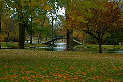 Worcester~ (ruthiedee) Tags: park bridge autumn trees fall leaves nikond70 foliage fromthecarwindow worcesterma favoritegarden travelerphotos