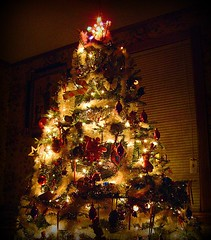shining star (Shawn Toohey) Tags: christmas decorations holiday tree ma lights star spirit massachusetts christmastree garland christmaslights springfield mass 2007  holidayspirit spfld holidaygarland christmastreedecorations spiritofchristmas springfieldatchristmas newenglandchristmastree