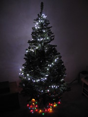 Christmas Tree at Night (William Hook) Tags: christmas tree fun lights fake led bq seasional