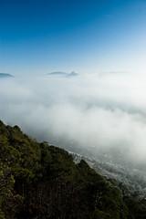 Annweiler in the Fog